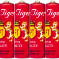 Pair_Tiger_Brand_Battery