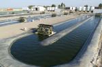 Algae biofuels research facility at Texas A&M